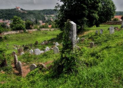 Židovský hřbitov Dolní Kounice