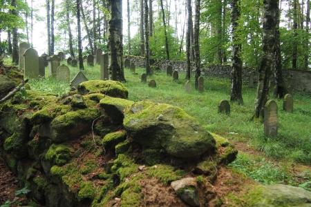 Židovský hřbitov Dřevíkov_6