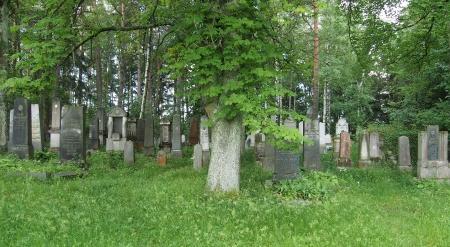 Židovský hřbitov Dřevíkov_8
