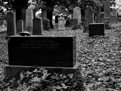 Židovský hřbitov Divišov_5