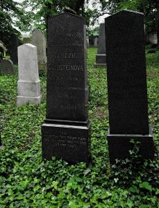 Židovský hřbitov Divišov_8