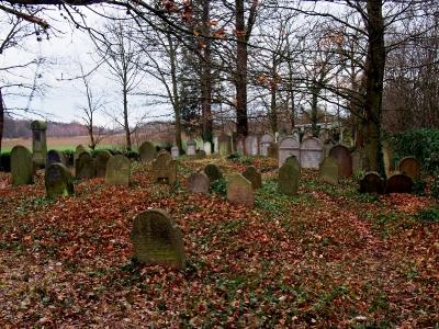 Židovský hřbitov Kostelec u Křížků