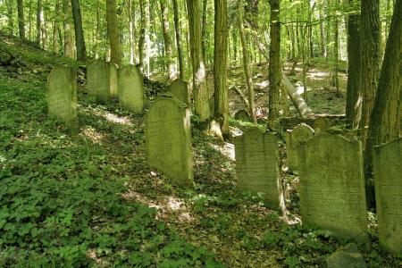 Židovský hřbitov Podbřezí