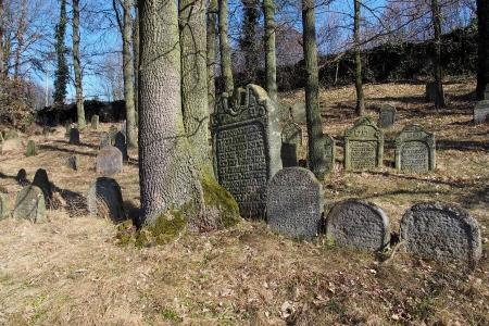 Židovský hřbitov v Kosově Hoře