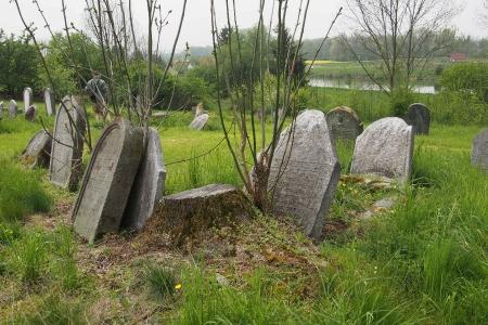 Židovský hřbitov Zájezdec