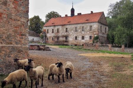 Zámek Zduchovice_11